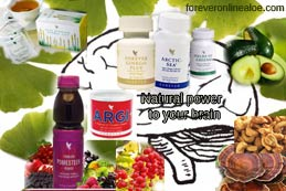 Foods and Supplement for Brain-Power-foreveronlinealoe.com